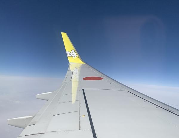 エアドゥに乗りセントレアから函館へ。旅行会社のツアーでの予約も有りですよ。